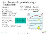 an observable partial energy fluctuations