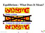equilibrium what does it mean1