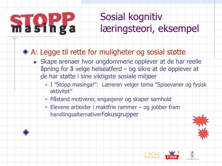 Sosial kognitiv læringsteori, eksempel
