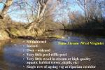 same stream west virginia