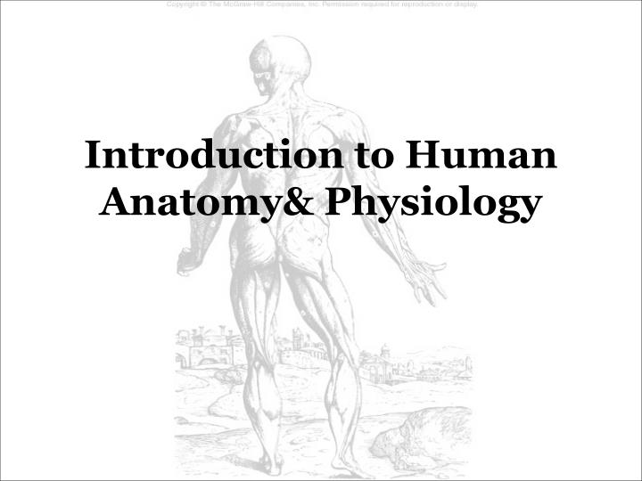 PPT - Introduction to Human Anatomy& Physiology PowerPoint ...