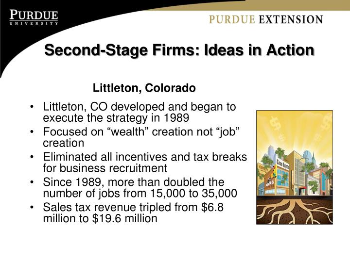 Second-Stage Firms: Ideas in Action