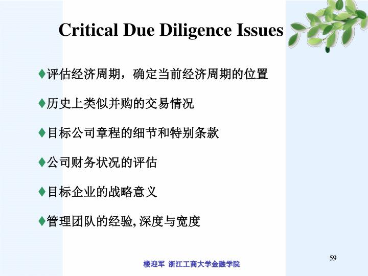 Critical Due Diligence Issues