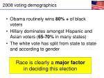 2008 voting demographics