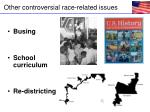 other controversial race related issues