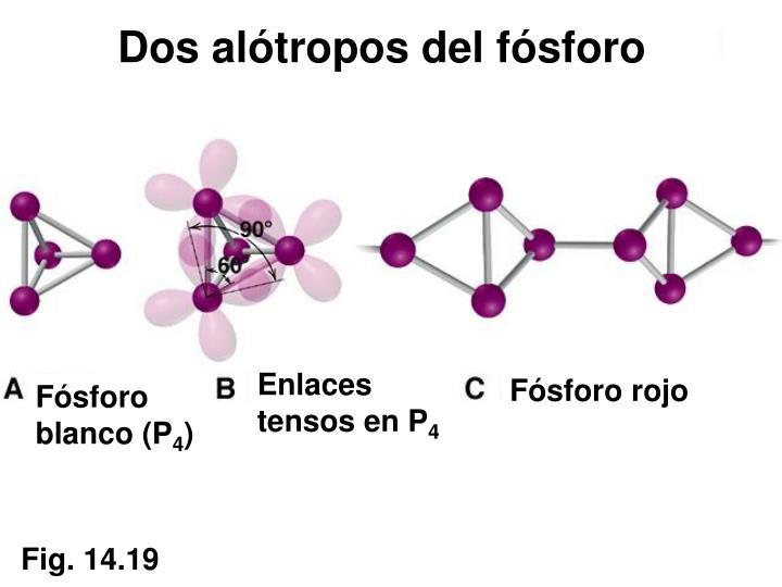 Dos alótropos del fósforo