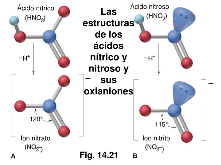 Ácido nitroso