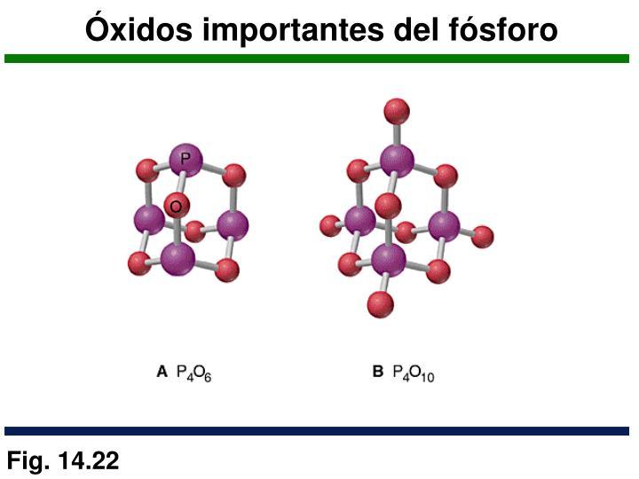 Óxidos importantes del fósforo