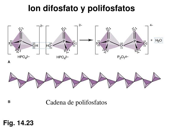 Ion difosfato y polifosfatos