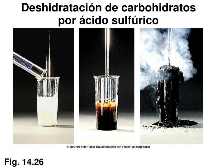 Deshidratación de carbohidratos
