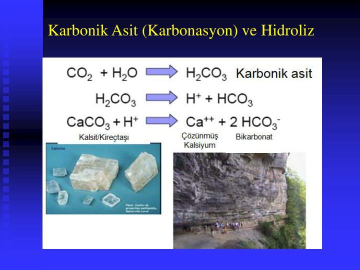 Karbonik Asit (Karbonasyon) ve Hidroliz