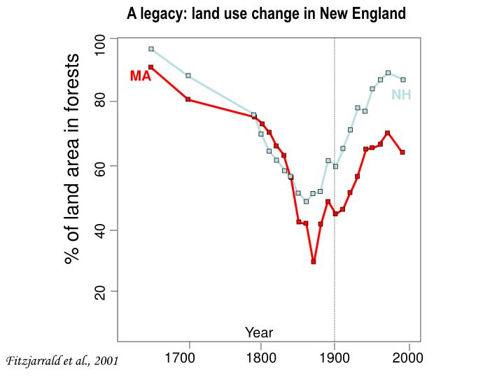 A legacy: land use change in New England