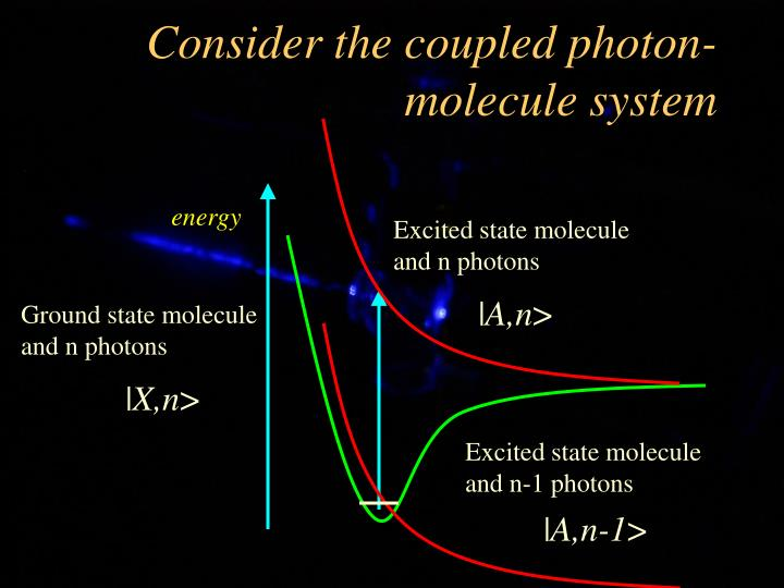 Consider the coupled photon-molecule system