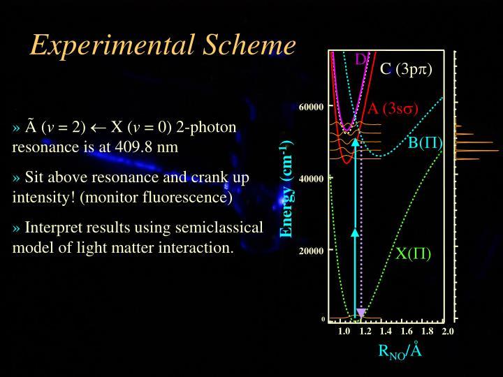 Experimental Scheme