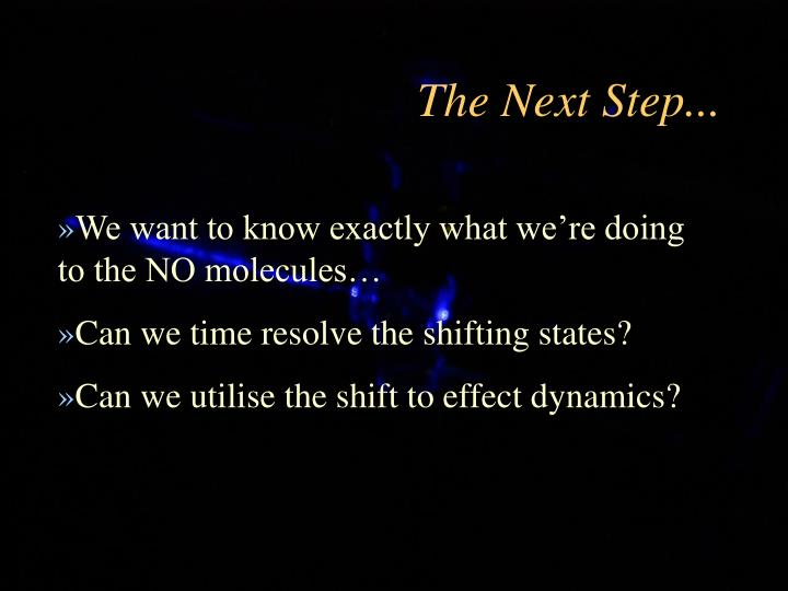 The Next Step...