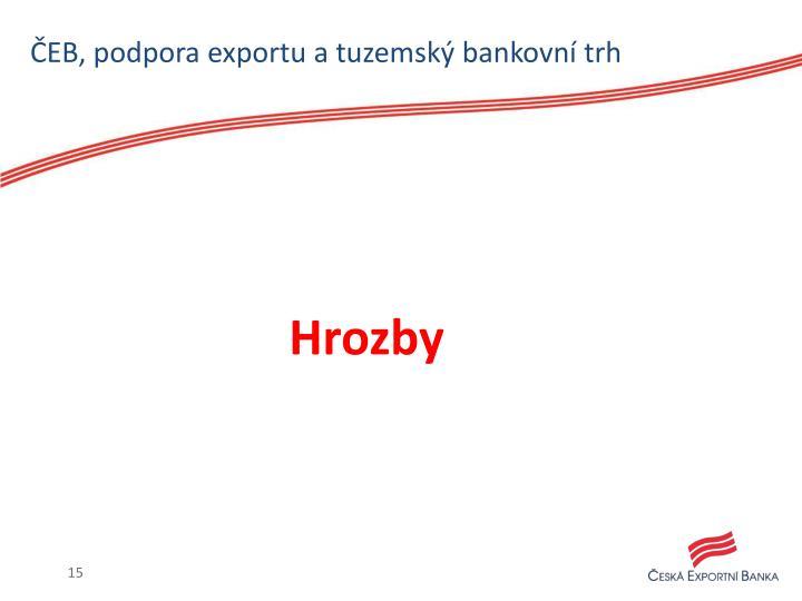 ČEB, podpora exportu a tuzemský bankovní trh