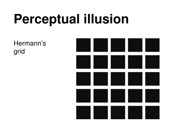 Perceptual illusion