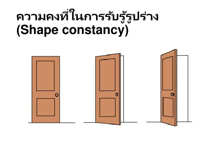 ความคงที่ในการรับรู้รูปร่าง(