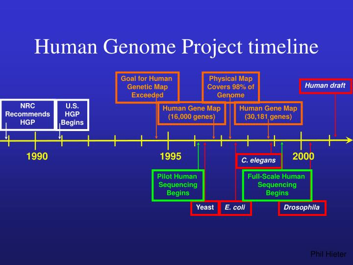 human genome project In april 2003, headlines around the world announced a momentous scientific  achievement: the completion of the human genome project.