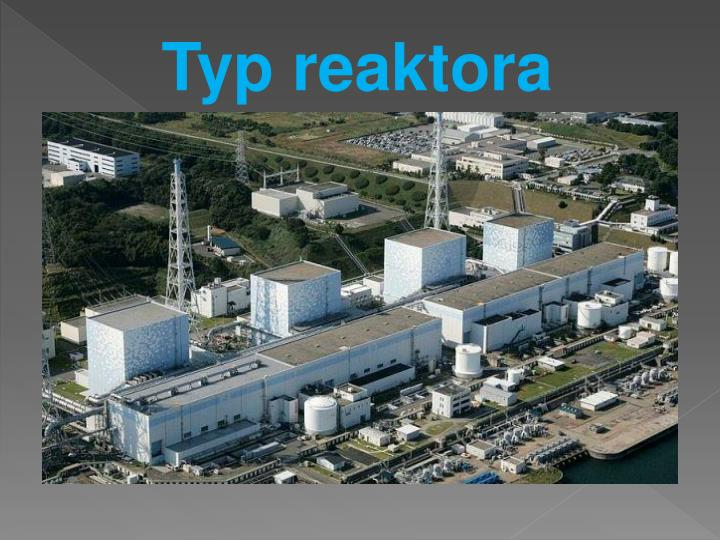 Typ reaktora