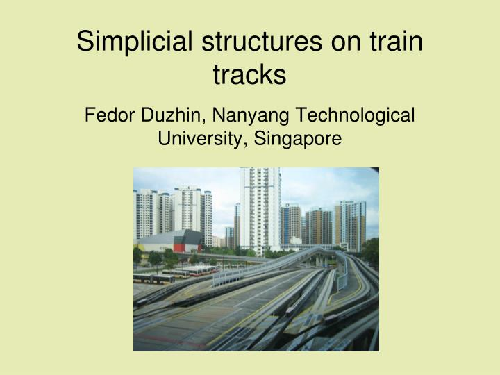 simplicial structures on train tracks n.