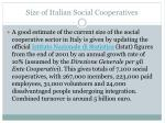 size of italian social cooperatives