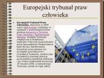 europejski trybuna praw cz owieka