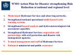 wmo action plan for disaster strengthening risk reduction at national and regional level