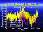 is the hockey stick correct1