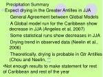 precipitation summary1