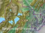tettegouche sp transect