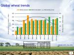 global wheat trends