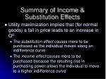 summary of income substitution effects