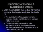 summary of income substitution effects1