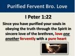 purified fervent bro love