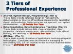 3 tiers of professional experience