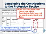 completing the contributions to the profession section3