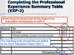 completing the professional experience summary table exp 2