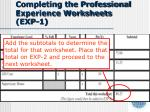 completing the professional experience worksheets exp 13