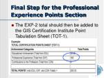 final step for the professional experience points section