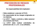 prevenci n de riesgos profesionales1