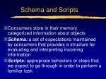 schema and scripts