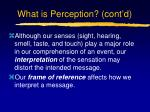 what is perception cont d