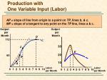 production with one variable input labor7