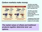 carbon markets make money