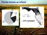 florida forests as offsets