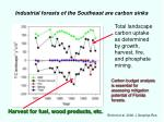 industrial forests of the southeast are carbon sinks