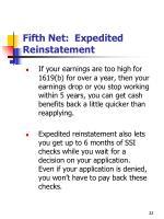 fifth net expedited reinstatement