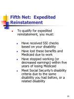 fifth net expedited reinstatement1