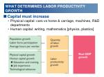 what determines labor productivity growth1
